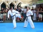 25-Jahre-Taekwondo-Gala (101).jpg