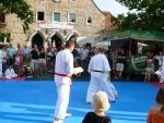 25-Jahre-Taekwondo-Gala (134).jpg