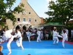 25-Jahre-Taekwondo-Gala (135).jpg