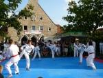 25-Jahre-Taekwondo-Gala (136).jpg