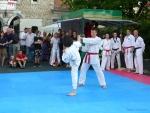25-Jahre-Taekwondo-Gala (137).jpg