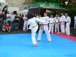 25-Jahre-Taekwondo-Gala (138).jpg