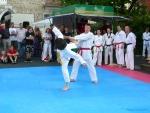 25-Jahre-Taekwondo-Gala (139).jpg