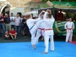 25-Jahre-Taekwondo-Gala (140).jpg