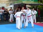 25-Jahre-Taekwondo-Gala (141).jpg