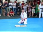 25-Jahre-Taekwondo-Gala (142).jpg