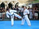 25-Jahre-Taekwondo-Gala (102).jpg