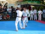 25-Jahre-Taekwondo-Gala (143).jpg