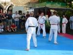 25-Jahre-Taekwondo-Gala (144).jpg