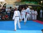 25-Jahre-Taekwondo-Gala (145).jpg