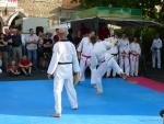 25-Jahre-Taekwondo-Gala (146).jpg