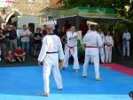 25-Jahre-Taekwondo-Gala (147).jpg