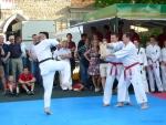 25-Jahre-Taekwondo-Gala (148).jpg