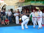 25-Jahre-Taekwondo-Gala (149).jpg