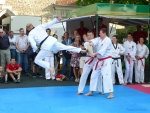 25-Jahre-Taekwondo-Gala (150).jpg