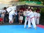 25-Jahre-Taekwondo-Gala (151).jpg