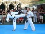 25-Jahre-Taekwondo-Gala (103).jpg