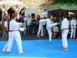 25-Jahre-Taekwondo-Gala (152).jpg
