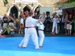 25-Jahre-Taekwondo-Gala (153).jpg