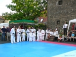25-Jahre-Taekwondo-Gala (16).jpg