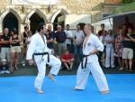 25-Jahre-Taekwondo-Gala (104).jpg