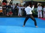 25-Jahre-Taekwondo-Gala (162).jpg