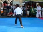25-Jahre-Taekwondo-Gala (163).jpg