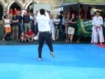 25-Jahre-Taekwondo-Gala (164).jpg