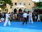 25-Jahre-Taekwondo-Gala (168).jpg