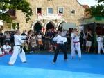25-Jahre-Taekwondo-Gala (169).jpg