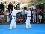 25-Jahre-Taekwondo-Gala (105).jpg