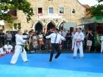 25-Jahre-Taekwondo-Gala (170).jpg