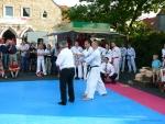 25-Jahre-Taekwondo-Gala (173).jpg