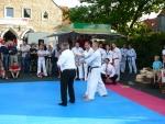 25-Jahre-Taekwondo-Gala (174).jpg