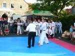 25-Jahre-Taekwondo-Gala (175).jpg