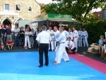 25-Jahre-Taekwondo-Gala (176).jpg