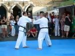 25-Jahre-Taekwondo-Gala (106).jpg
