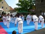 25-Jahre-Taekwondo-Gala (18).jpg