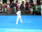 25-Jahre-Taekwondo-Gala (19).jpg
