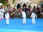 25-Jahre-Taekwondo-Gala (21).jpg