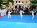 25-Jahre-Taekwondo-Gala (22).jpg