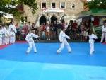 25-Jahre-Taekwondo-Gala (23).jpg