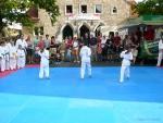 25-Jahre-Taekwondo-Gala (24).jpg