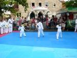 25-Jahre-Taekwondo-Gala (25).jpg